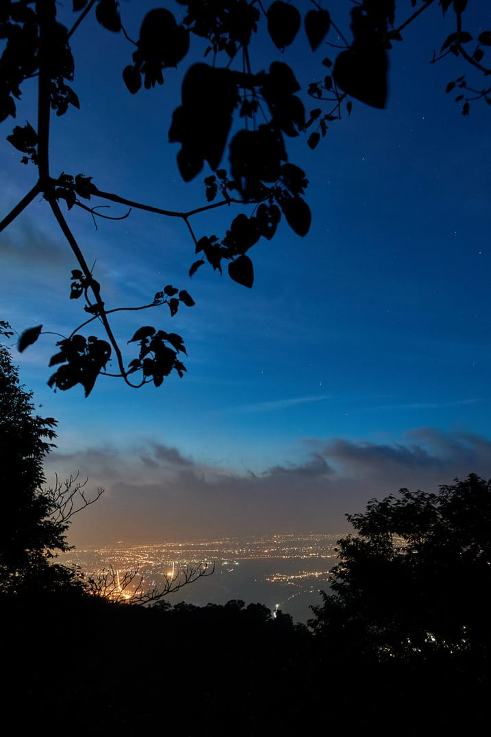 Night picture of stars above and lights of city below - trees black in the foreground