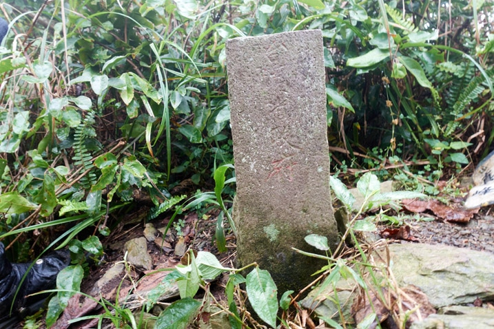 Closeup of triangulation stone for ZhenLiShan Southeast Peak - 真笠山東南峰