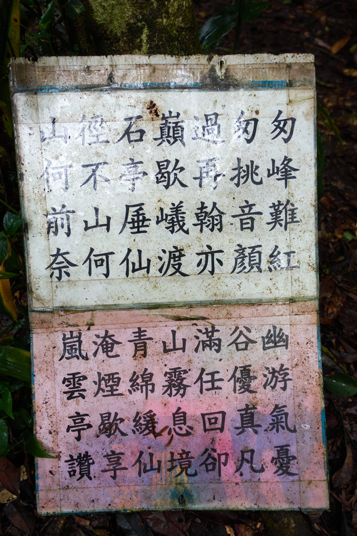 Closeup of signs in Chinese attached to a tree
