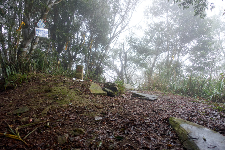 Open area on top of mountain - foggy - triangulation stone for 鱈葉根山 - XueYeGenShan and many trees