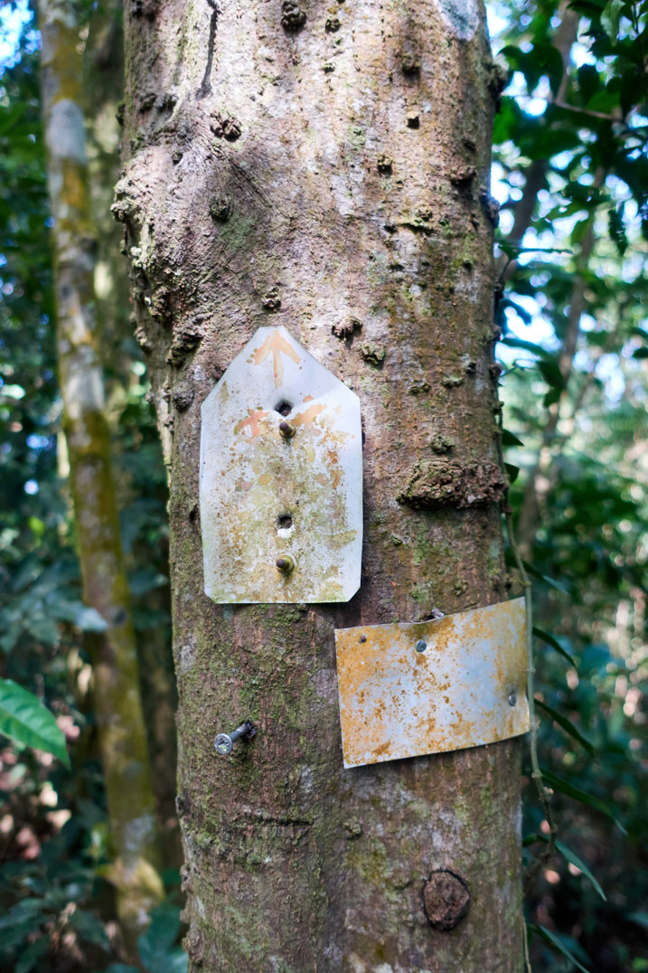 Two small signs nailed to a tree