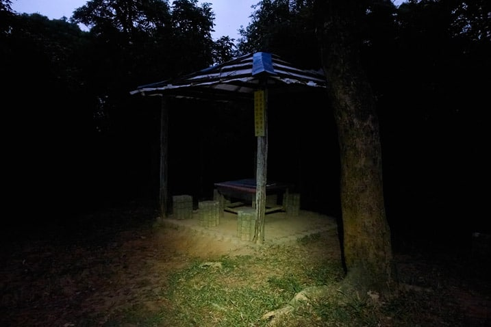 Covered gazebo-like area next to road - dark - tree in foreground