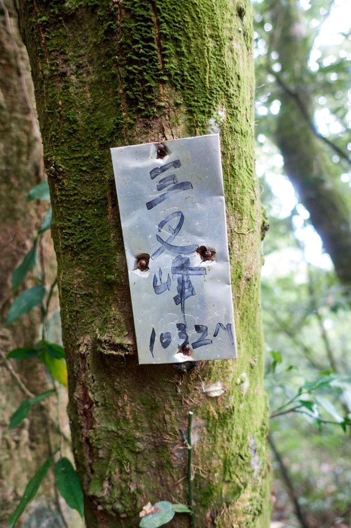 Metal sign nailed to a tree with Chinese words