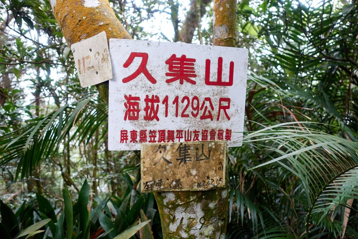 A few signs attached to a tree with Chinese writing - plants in background
