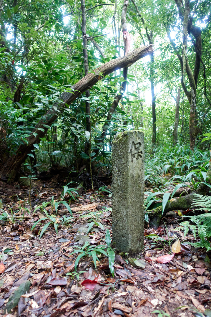 Concrete pillar with Chinese character sticking out of ground - trees in background