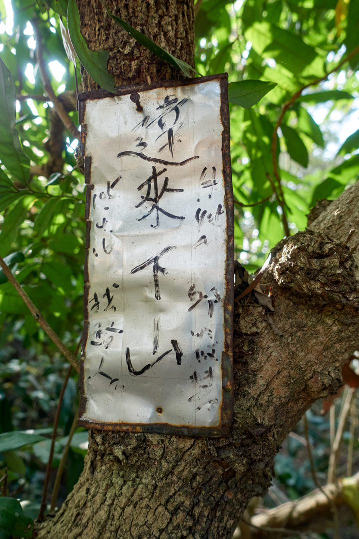 Old metal sign with writing on it attached to tree