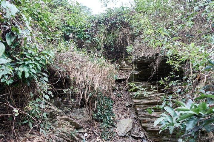 Rocky and jungle-like short climb up mountain ridge