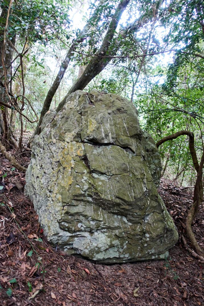 Large boulder - trees in background