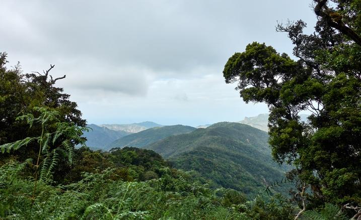 Mountain Landscape - ocean in background