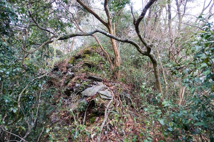 Looking up mountain ridge - many trees and rocks