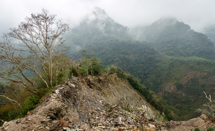 Eroding ridge - many trees and rocks - cloudy/foggy - mountain in background