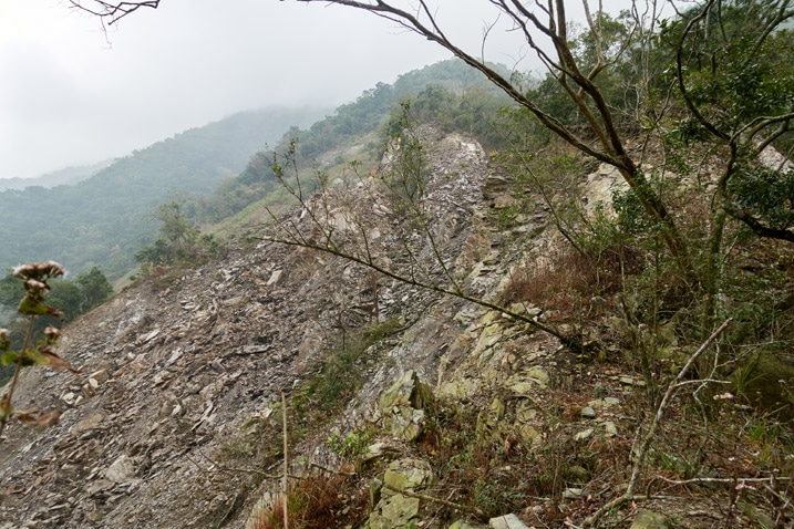 Large landslide - trees to right