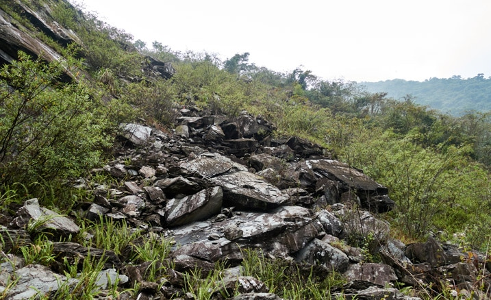 Looking up at old landslide - many boulders stacked on top of each other - vegetation growing all around them