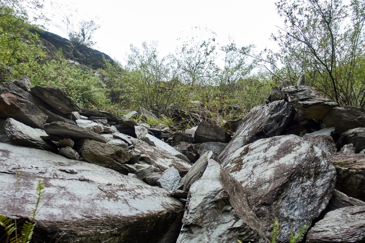 Looking up at old rock slide - many large boulders - vegetation mixed in