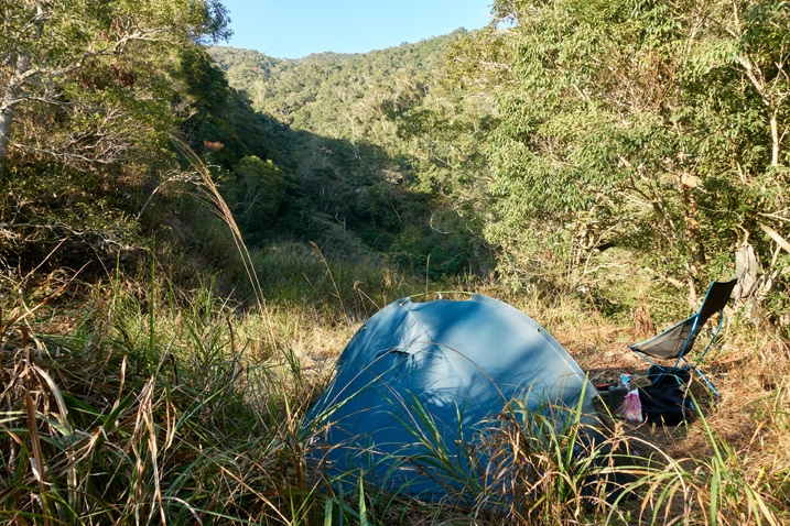 Blue tent and camp chair with tall grass in foreground - lots of trees in background - mountain just visible in distance - tiny bit of blue sky