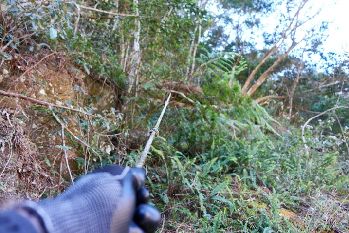 Gloved hand holding thin rope going up mountain - many trees in background