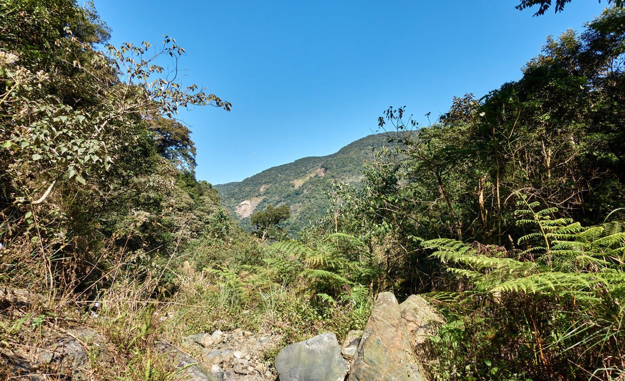 Dry mountain stream bed - rocky - trees either side - mountains and blue sky in distance