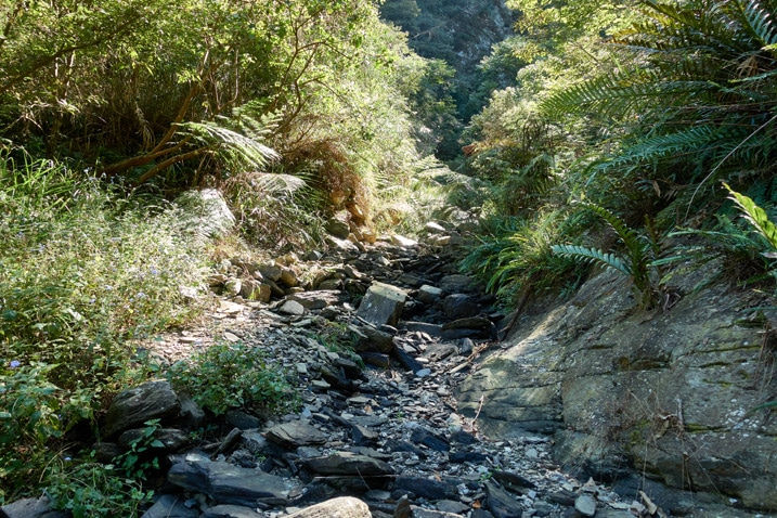 Dry mountain stream bed - rocky - trees on either side