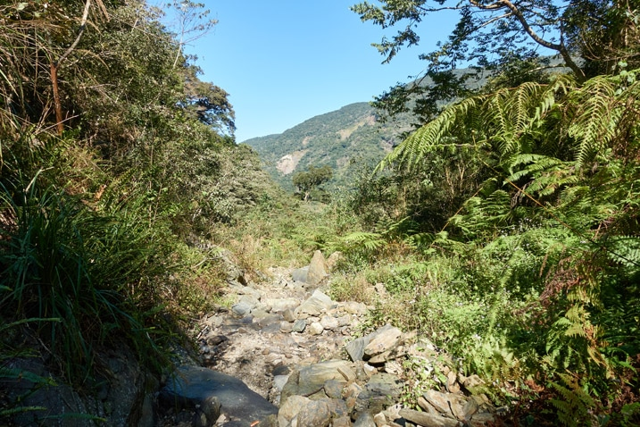 Mountain stream bed - rocky - dry - trees on either side - mountains in distance