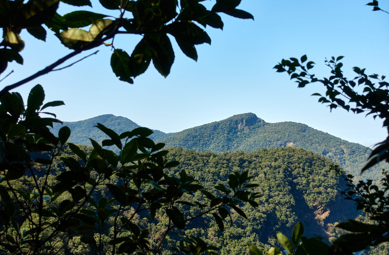 Landscape view of blue sky and mountains in the distance - tree leaves in foreground
