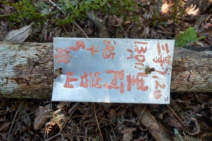 Metal sign attached to fallen tree branch - Chinese written on it