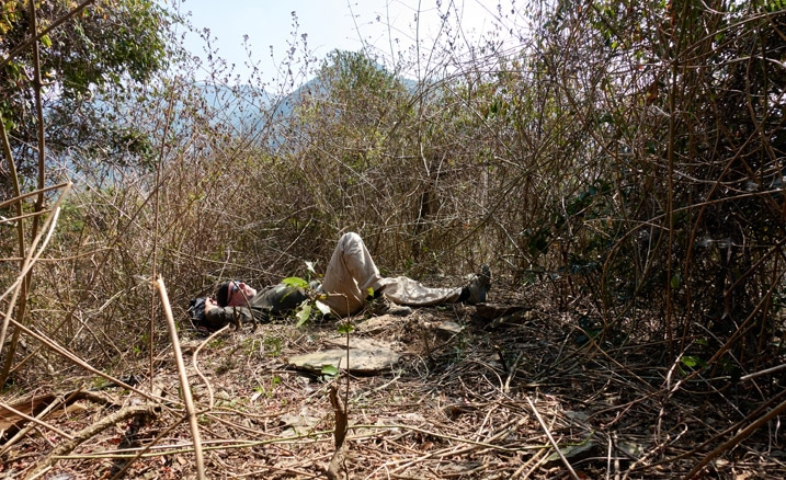 Man lying down on mountain peak - many vines and overgrowth around him