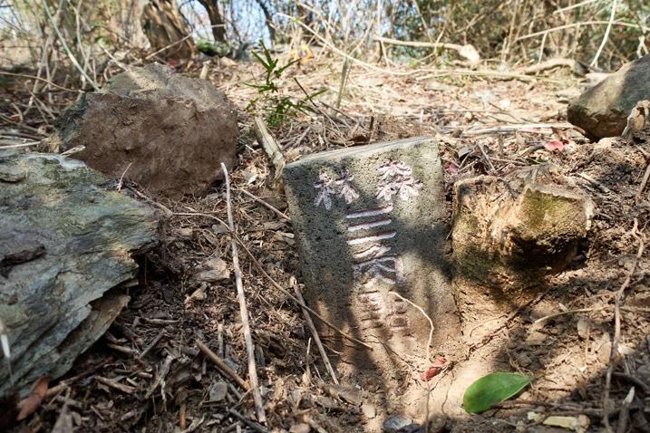 DeSheShan - 德社山 triangulation stone closeup