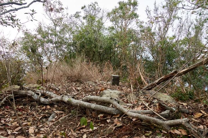 Triangulation stone for BeiDeWenShanXiFeng 北德文山西峰 - trees in background - fallen branches in foreground