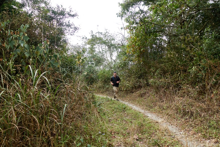 Man running on mountain dirt road - trees on either side